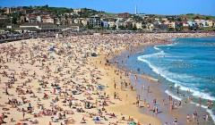 Новогодняя атака акулы на пляж Бонди в Сиднее