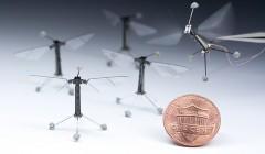 Ученые из Гарварда научили робота-пчелу плавать