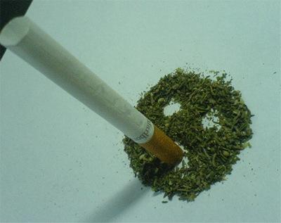 Смертельной дозой является 60 грамм марихуаны с 5 % содержанием ТГК.