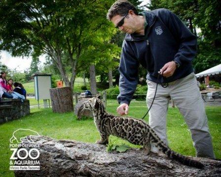 Этот зоопарк находиться в городе Такома Вашингтон