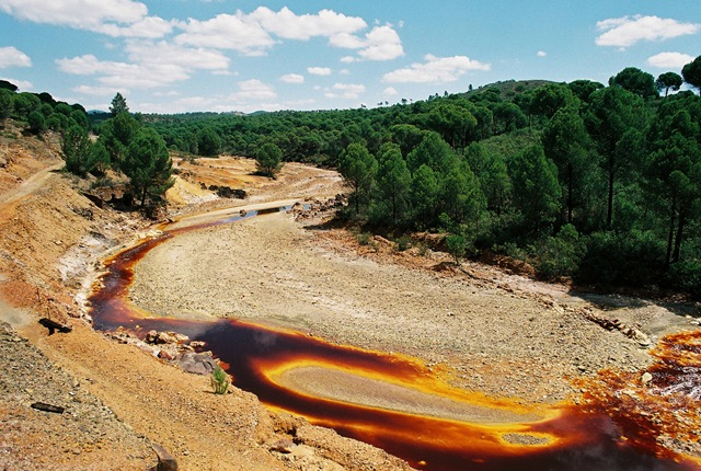 Жизни в таких условиях по-идеи быть не должно, но тем не менее в этой воде живут целые колонии «экстремалов» — бактерии