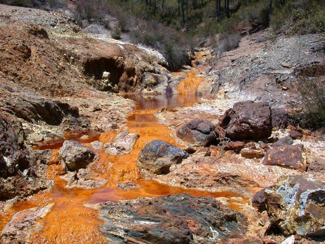 в реке Рио-Тинто могут жить теже самые бактерии-экстремалы
