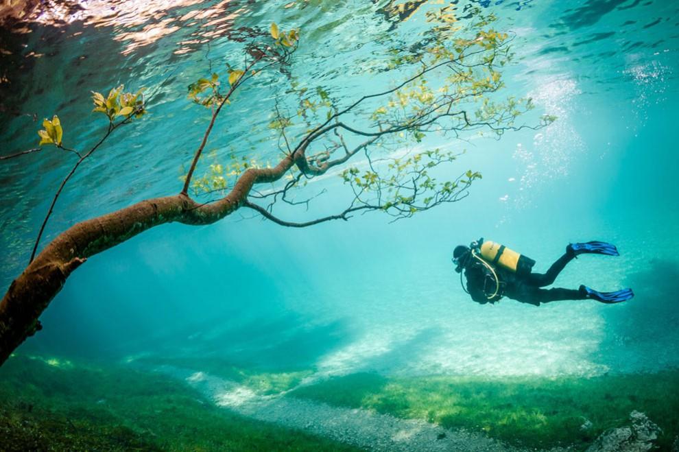 А это фото с глубины озера Грюнер, которое находится в Австрии, город Трагёс.