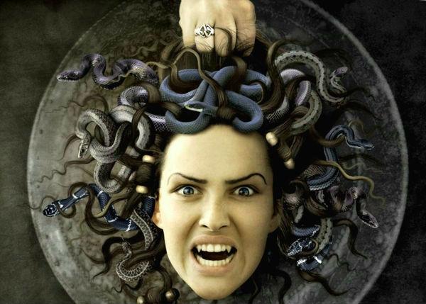 Полированный щит Афины позволил смотреть победителю через отражение. Взяв отрубленную голову и положив её в сумку, он надел шапку невидимку и благополучно скрылся от остальных бессмертных сестёр змееволосой.