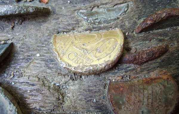 moneta-v-dereve