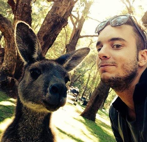 Классное фото с кенгуру