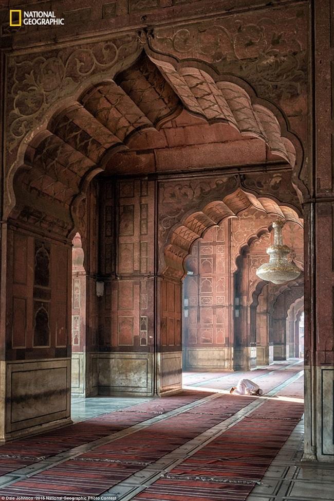 Фотограф Дейл Джонсон пишет: «Я был в Дели по работе и рано утром пошел мечеть Джама Масджид
