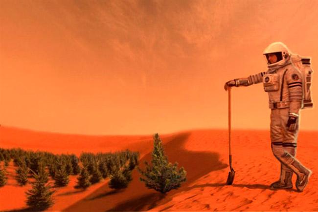 Датские студенты создают мох для выращивания на Марсе