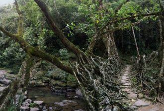 Естественные мосты