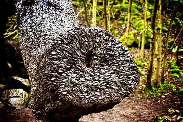 Английские деревья с монетами