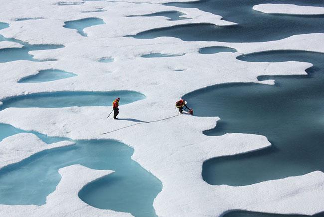 Исследования Арктики могут стать круглогодичными