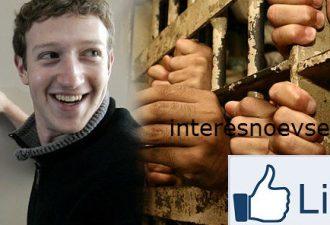 Поставить «лайк» в Фейсбук и угодить в тюрьму