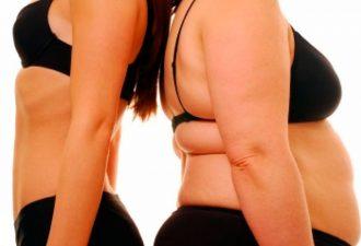 В борьбу с ожирением вступает конопля