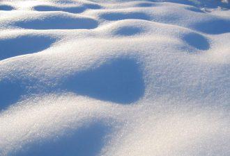 В США молодой человек продает снег