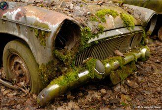 Если вы любите старые автомобили, вы должны обязательно посетить Autrofriedhof (автомобильное кладбище) вGurbetal в Швейцарии. Эта огромное место последнего упокоения более чем 400 мотоциклов и 1000 автомобилей.